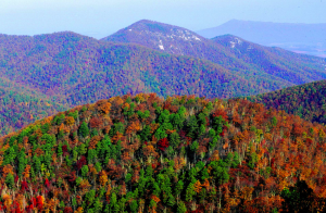 Shenandoah National Park Facts & Info