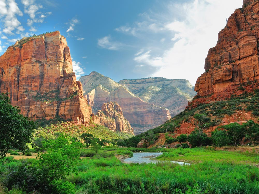 Zion National Park River Usa