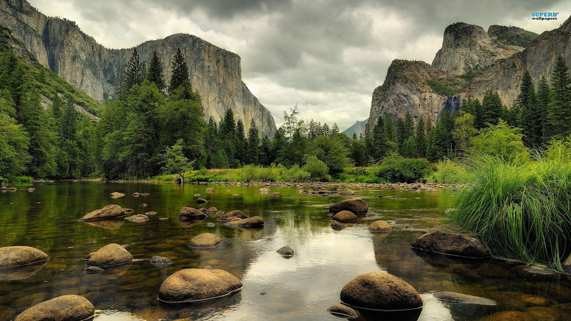yosemite-national-park-summer - Tiverton Foundation